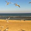 Kaufland Reisen: Ostsee-Urlaub in Polen ab 129 Euro