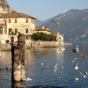 Plus Reisen 2013: Gardasee-Hotel Limone günstig buchen!
