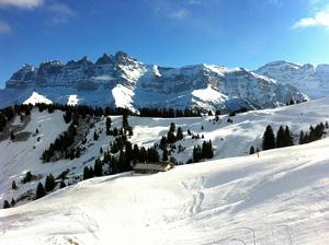Skiurlaub-Skireisen