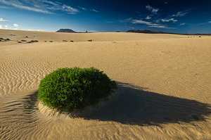 Fuerteventura-Strandurlaub