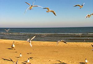 Ostsee-Urlaub-Polen