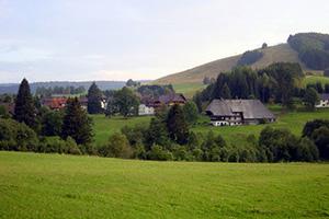 Netto-Reisen-Bayern-Ostsee-Schwarzwald